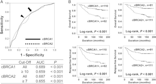 The prognostic significance of the cytoplasmic expression of BRCA1 and BRCA2 in 192 BCAs. (A) The receiver operating characteristic curve analysis for the determination of cutoff points for the immunohistochemical staining scores of the cytoplasmic expression of BRCA1 (cBRCA1) and BRCA2 (cBRCA2). The cutoff points were determined at the highest area under the curve value representing the highest positive likelihood point for the estimation of the death of patients. The arrowhead indicates the cutoff point for cBRCA1, and the arrow indicates the cutoff point for cBRCA2. Cases with scores equal or greater than 10 for cBRCA1 expression were considered positive. The cBRCA2 expression was considered positive when the scores were equal or greater than 7. (B) Kaplan-Meier survival analysis for the OS and RFS according to cBRCA1 and cBRCA2 expression.