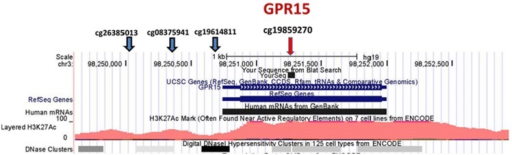 Position of Illumina GPR15 methylation probes. The position of Illumina GPR15 methylation probes per the UCSC Genome Browser (http://genome.ucsc.edu). The genome-wide corrected p-values for the CpG residue probes are p-value <0.90, p-value <0.39, p-value <0.10, and p-value <6.2E−05, respectively (left to right).