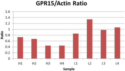 Relative ratio of GPR15/Actin. The figure depicts the relative ratio of GPR15/Actin for each PBMC cell pellet. H1 through H4 represent the four samples with the highest cg19859270 methylation, whereas L1 through L4 represent four samples with the lowest cg19859270 methylation.