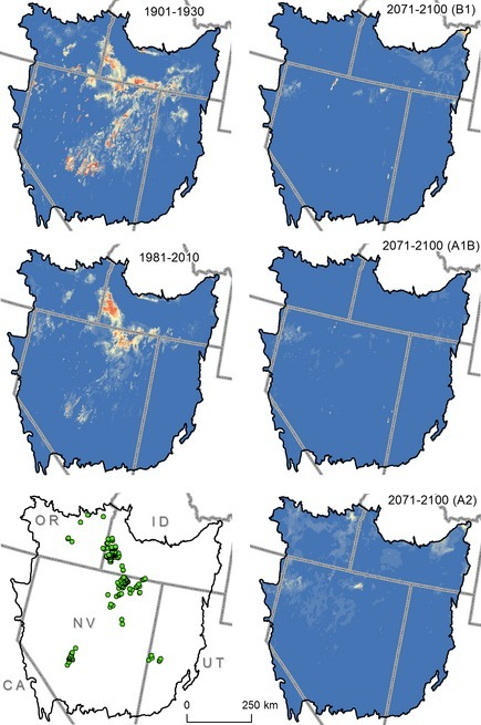 Geographic projections of past (1901–1930), recent (1981–2010), and future (2071–2100) climate suitability for Columbia spotted frogs in the Great Basin (black line). Projections were based on applying a model of breeding location climate to similar data from each time or carbon emission scenario (B1, A1B, and A2; ordered low to high carbon emissions). Each panel uses an equivalent color ramp, with cooler colors indicating lower probability of suitability and warmer colors indicating greater suitability (range = 0–0.97). Points shown in green are current breeding locations (points in Utah were not used in model development).