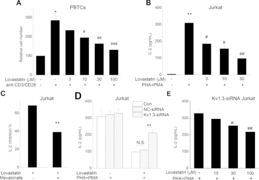 Effect of Lovastatin on T cell proliferation and IL-2 production.(A) PBTCs were seeded and pre-incubated with 0, 3, 10, 30, or 100 μM Lovastatin. After 30 min, anti-CD3/CD28 antibodies were added to induce PBTCs proliferation. After 3 days, the relative cell number was determined by CCK-8 kit. The summarized data from at least 5 duplicates was expressed as mean ± SEM. **P < 0.01 vs. control, #P < 0.05, ##P < 0.01 vs. CD3/CD28 stimulated group without Lovastatin. (B) Jurkat cells were pre-treated with 0, 3, 10, 30, or 100 μM Lovastatin for 30 min, then stimulated with PHA + PMA for 24 h. The supernatants were collected for IL-2 measurement. **P < 0.01 vs. control, #P < 0.05, ##P < 0.01 vs. PHA + PMA stimulated group. (C) Jurkat cells were treated using 100 μM Lovastatin with or without 1 mM Mevalonate application. Then, the inhibition% of Lovastatin on IL-2 secretion was calculated and showed. (D) Con Jurkat cells and NC- or Kv1.3-siRNA-transfected cells were pre-treated with 0 or 100 μM Lovastatin for 30 min, then stimulated with PHA + PMA for 24 h. The supernatants were collected for the measurement of IL-2. **P < 0.01 vs. NC-siRNA group and N.S. represented no statistical significance. (E) Kv1.3-siRNA-transfected Jurkat cells were pre-treated with 0, 10, 30, or 100 μM Lovastatin for 30 min, then stimulated with PHA + PMA for 24h. The supernatants were collected for the measurement of IL-2. (#P < 0.05, ##P < 0.01 vs. PHA + PMA stimulated group).