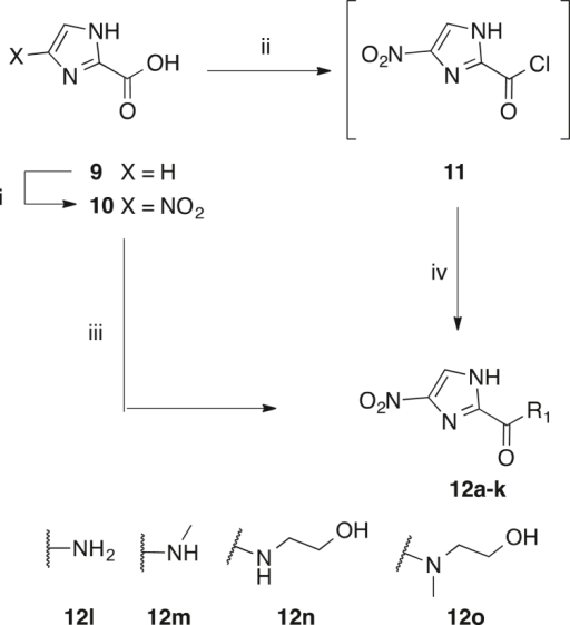 Synthesis of 4(5)-nitroimidazoles 12a-o. Amide groups a-k are as defined in Scheme 1. i) HNO3, H2SO4, 80 °C, 54%; ii) oxalyl chloride, cat. DMF, DCM, 0 °C → rt; iii) amine, PyBOP, DIPEA, 6–75% iv) amine, TEA, DCM, 0 °C → rt, 12–93%.