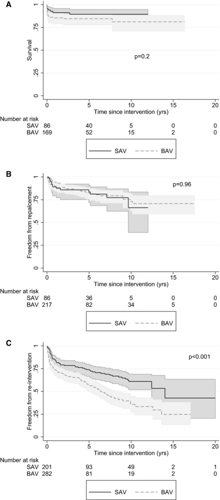Kaplan‐Meier curves for survival (A), freedom from aortic valve replacement (B), and freedom from reintervention (C) by intervention in infants <1 year of age at initial intervention. BAV indicates balloon aortic valvuloplasty; SAV, surgical aortic valvotomy.