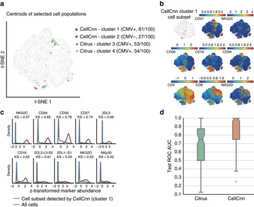 Detection of rare CMV seropositivity-associated cell populations.(a) Visualization of the cell subsets selected by CellCnn and Citrus across 100 Monte Carlo cross-validation (CV) repetitions. Centroids of selected populations are highlighted on a t-SNE map computed from all samples using 20,000 cells per individual (see Methods for details). The cell population most frequently (81 out of 100 times) selected by CellCnn is positively associated with CMV prior infection, whereas the second most frequent cell subset is negatively associated with CMV seropositivity. (b) t-SNE map colour-coded according to abundance of selected markers. The top-left subplot depicts the cell subset most frequently selected by CellCnn, corresponding to cluster 1 in a, (see Methods for details). This cell subset corresponds to a memory-like (NKG2C+, CD57+) NK (CD56+, CD3−) and NK T (CD56+, CD3+) cell population. (c) Histograms of selected marker abundances for the whole-cell population and the cell subset most frequently selected by CellCnn. (d) Boxplot of area under the ROC curve (ROC AUC) on the test samples for 100 Monte Carlo CV repetitions. The median test ROC AUC for CellCnn is equal to 1.