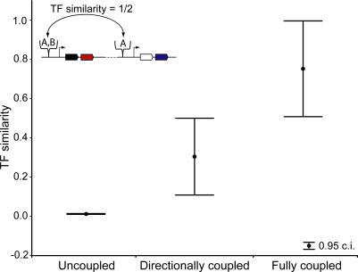 Transcription Factor (TF) Similarity Correlates with the Type of Flux Coupling