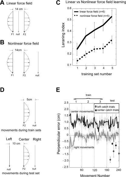 Predictions of the Gain-Field Encoding and Experimental Verification(A) A field where forces are linearly dependent on both limb position and velocity.(B) A field where forces are linearly dependent on limb velocity but nonlinearly dependent on limb position. Gain-field encoding predicts that the field in (B) will be harder to learn than one in (A).(C) Learning index of subjects (n = 6) for the paradigm in (A) and subjects (n = 5) for the paradigm in (B).(D) Gain-field encoding predicts hypergeneralization. The figure shows movements and its associated force field during training and test sets.(E) Performance of subjects (n = 4) for the paradigm in (D). Dark lines are errors in center movements and gray lines are errors in right movements. The shaded areas represent the SEM. Filled diamonds show the catch trials for the left movements during test set; filled squares show the catch trials for center movements.