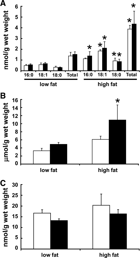 Improvement of insulin senstivity in MCD−/− mice subjected to DIO does not correlate with the accumulation of myocardial lipid intermediates. A: DIO increased long-chain acyl CoAs to similar extents in both WT and MCD−/− mice. B: Triacylglycerols only accumulated in MCD−/− mice following DIO and did not accumulate in WT mice. C: Ceramides do not accumulate following DIO in hearts from WT and MCD−/− mice. Values represent means ± SE (n = 4–11). Differences were determined using a two-way ANOVA followed by Bonferroni post hoc analysis. *P < 0.05, significantly different from low fat–fed counterpart. ■, MCD−/−; □, WT.