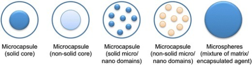 Potential particles morphologies (adapted from [224])