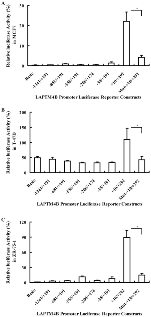 Relative luciferase activities from a series of 5′-deleted constructs and mutated construct.The luciferase mean values of three independence experiments performed in triplicates in MCF7, T-47D and ZR-75-1 respectively.