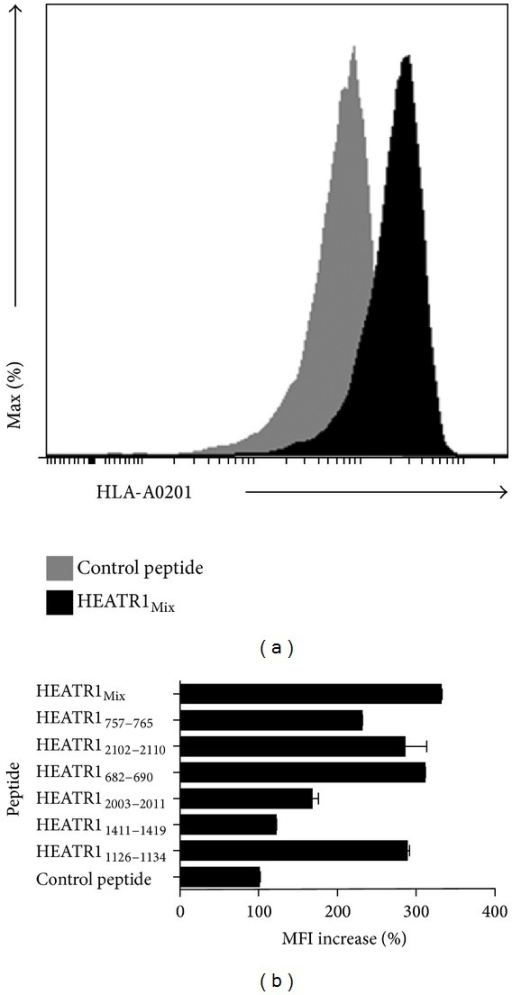 HLA-A02 binding affinity of six candidate peptides. (a) Flow cytometry results of HEATR1mix. (b) The binding activity of selected peptides to HLA-A∗02 molecule was determined semiquantitatively by measuring peptide-induced expression of HLA-A∗02 on T2 cells with flow cytometry. Data from three independent experiments were expressed as the mean ± SE. Unrelated 15-mer peptides were considered as control peptide.