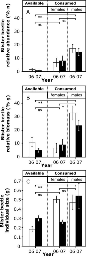 Blister beetle relative abundance (A) and biomass (B) in relation to all invertebrates sampled in field transects (column 'available'), and found in faeces of females and males (columns 'consumed') in two springs (2006 and 2007).(C) Mean body size (± SD, g) of blister beetles sampled in field transects (column 'available') and found in faeces of females and males (columns 'consumed') in two springs (2006 and 2007). Differences in A and B were compared with the test of differences between percentages, and those in C with a Student's t-test, in all cases with data from both years pooled (horizontal lines; ns: P>0.05, *: P<0.05, **: P<0.01).