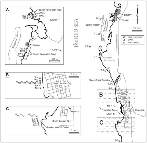 Sampling locations and potential sources of anthropogenic contamination.(A) Sampling points along the KAUST beach (KW1 through KW4) and Thuwal beach (TW1 through TW4), (B) Sampling points N1 through N9 that are at north of Jeddah City, and of close proximity to the urban settlement (C) Sampling points S1 through S8 which are at south of Jeddah City, and of close proximity to a treated wastewater outfall. Sampling points NS1 and NS2 denote sampling sites between north-south sampling sites. Sampling points T1 through T8 denote sampling sites along the coastline. Detailed GPS coordinates are provided as supplementary information. Figure 1 is generated by AutoCAD version 2015 on a commercial license issued to KAUST.