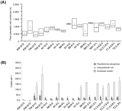 Cell abundances in the water samples as determined by flow cytometry.(A) Total cell counts per mL in the KW and TW beach waters, and in the near-shore waters, and (B) Copies per L of regA, glyA and rpoB associated with Pseudomonas aeruginosa, Campylobacter coli and Arcobacter butzleri, respectively.