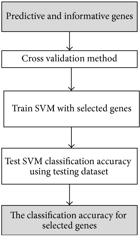 The classification phase (SVM classifier).