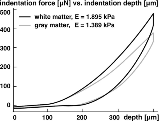 Representative force versus depth response of indentation test performed on coronal slices of bovine white and gray matter. White matter is approximately one-third stiffer than gray matter, adapted from (Budday et al. 2015b)