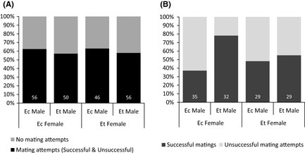 Mating preferences. (A) Males attempted to mate in about half the mating trials, with no difference among treatments (G32 = 1.914, P = 0.119). (B) Females on Eriodictyon trichocalyx did not show a preference in potential mates, but females on Eriodictyon crassifolium accepted mating advances from far more Eriodictyon trichocalyx males than Eriodictyon crassifolium males (G32 = 10.305, P = 0.005).