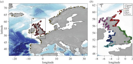 Geographical locations of the harbour porpoises sampling based on GPS coordinates or reported discovery location. (a) Global overview of the individuals considered in this study including the genotyped individuals from UK waters (red points) and the Northeast Atlantic individuals from Fontaine et al. [4] (yellow dots). (b) Locations of the UK samples have been subdivided into six regions around the UK and colour-coded accordingly for regional analyses.