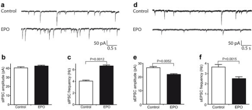 Neurophysiology of acute hippocampal slices: Intracellular recordings. (a-c) EPO enhances inhibitory transmission. (a) Representative recordings of spontaneous, pharmacologically isolated inhibitory postsynaptic currents (sIPSCs) from CA1 neurons. (b) Averaged amplitude of sIPSCs is not significantly altered in EPO-treated mice (N = 6 neurons/5 mice) compared to control (N = 4 neurons/4 mice; P = 0.0869). (c) Averaged frequency of sIPSCs is significantly enhanced in EPO-treated mice (N = 6 neurons/5 mice) compared to control (N = 4 neurons/4 mice). (d-f) EPO decreases excitatory transmission. (d) Representative recordings of spontaneous, pharmacologically isolated excitatory postsynaptic currents (sEPSCs) from CA1 neurons. (e) Averaged amplitude of sEPSCs is significantly decreased in EPO-treated mice (N = 4 neurons/4 mice) compared to control (N = 4 neurons/3 mice). (f) averaged frequency of sEPSCs is significantly decreased in EPO-treated mice (N = 4 neurons/4 mice) compared to control (N = 4 neurons/3 mice).