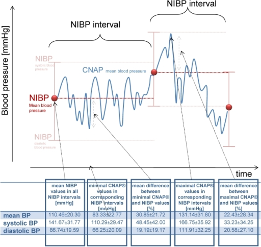 The variance of CNAP® values for every NIBP interval based on the first NIBP value