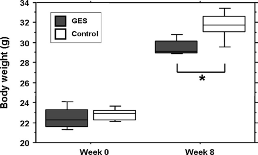 The weight development is reduced in GES-treated mice. No difference in the mean weight is noted at the beginning of the study (week 0), between the treated group and the control group (SEM, n = 8, P > 0.05, Student's t test). After 2 months of treatment, the mean weight of the GES-treated mice is significantly reduced (SEM, n = 8, P = 0,024, asterisk denotes Student's t test)