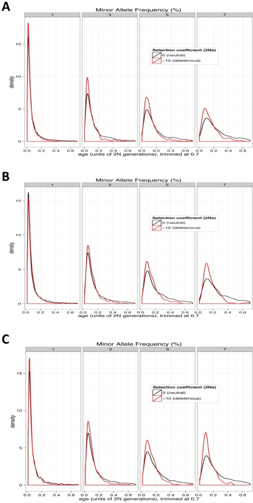 Age distributions for neutral and deleterious alleles from simulations.(A) Constant-size, (B) recently rapidly expanding population, and (C) bottleneck followed by rapid expansion. For presentation, distributions are trimmed. Deleterious alleles in all cases are younger than neutral alleles at the same frequency, though the effect is weaker in rapidly expanding populations.
