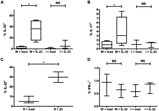 IL-1R1 is required for IL-23-stimulated IL-17 and IL-22 production by LTi-like cells in vitro.(A and B) Box and whiskers plot depicting percent of WT (W) or IL-1R1−/− (I) colonic CD4+ LTi-like cells that produce IL-22 (A) or IL-17 (B). (C) Box and whiskers plot depicting percent of colonic LTi-like cells isolated from Rag1−/− (R) C57BL/6J mice that produce IL-22. (D) Box and whiskers plot depicting percent of WT (W) or IL-1R1−/− (I) colonic CD4+ LTi-like cells that produce IFN-γ. Except in (C), cells were isolated from WT (top panels) or IL-1R1−/− C57BL/6J mice (bottom panels). Cells were stimulated by rIL-23 (23; right panels) or medium (M; left panels). Box and whisker plots representative of at least three independent experiments. *, p<0.05; NS, not significant. For box and whisker plots, line represents median, box represents 25th to 75th percentile range, and whiskers represent range.