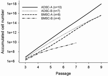 Comparison of the accumulated cell number of ADSCs and BMSCs from groups A and B. The average accumulated cell number of each ADSC and BMSC line was obtained at each passage and plotted against the number of passage (passages 3–9). n represents the number of stem cell lines survived at each passage unless otherwise stated in the legend of Figure 1.