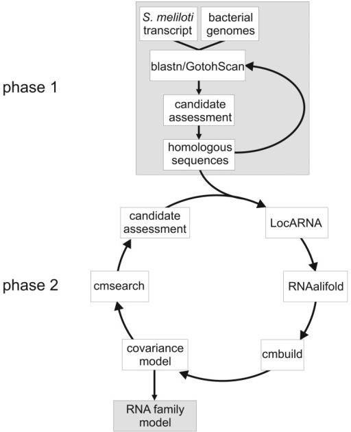 Workflow of covariance model construction.
