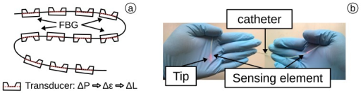 (a) Distributed pressure sensor based on an FBG chain with transducers; (b) sensor placed in a catheter.