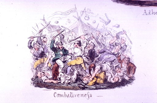 <p>Men are hitting each other with sticks in front of a tent.  A flag is flying over the tent that reads: Donny Brook.</p>
