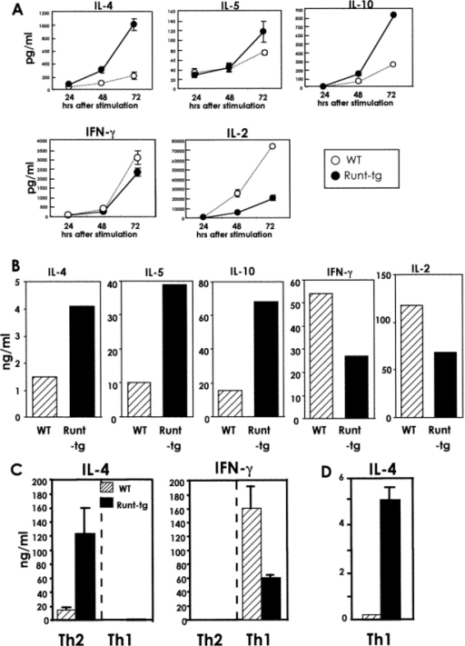 Production of Th2- and Th1-type cytokines from wild-type and Runt-transgenic CD4+ T cells. (A) Naive CD4+ T cells were isolated from the spleens of wild-type and Runt–transgenic mice and stimulated with anti-CD3/anti-CD28 antibodies, and the culture supernatants were collected at the indicated times after stimulation. (B) The TCR-stimulated cells were cultured in the presence of IL-2 for 5 d, washed with fresh media, and restimulated via TCR. The culture supernatants were collected after 24 h. (C) The cells were cultured for four days in the Th2- or Th1-inducing condition. The cells were washed with fresh media and restimulated via TCR. The culture supernatants were collected after 24 h. (D) Same as C, but note the difference of scale used in C and here. The amounts of cytokines secreted into the supernatants were measured by ELISA and their averages and standard deviations are shown. Data are representative of four independent experiments.