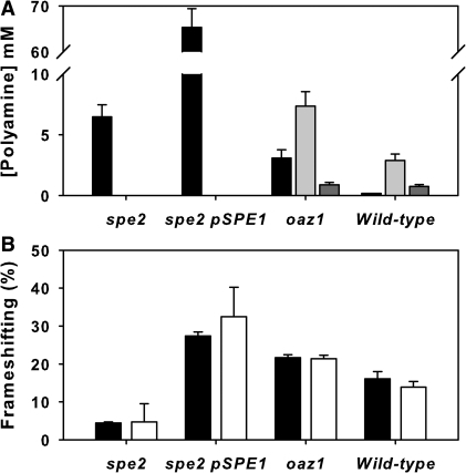 Validation of the ribosomal controller frameshift model. (A) Polyamine concentrations were measured in a spe2 mutant with and without SPE1 gene overexpression, in an oaz1 deletant, and in the wild-type strain (putrescine; filled bar, spermidine; light grey, spermine; dark grey). Error bars represent standard deviations (n = 3). (B) Ribosomal frameshift frequencies were measured in the same mutant panel (filled bars) and the intracellular polyamine concentrations measured in the mutants were fed into the frameshift function to predict the frameshift frequency (open bars; error bars represent model uncertainty range originating with variation in the experimental data).