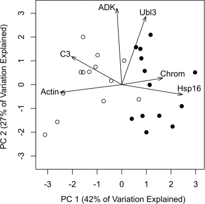 an analysis of stress response Simplified analysis method in lieu of a response-spectrum or time history dynamic analysis to determine the dbe design forces, the simplified method may be used if.