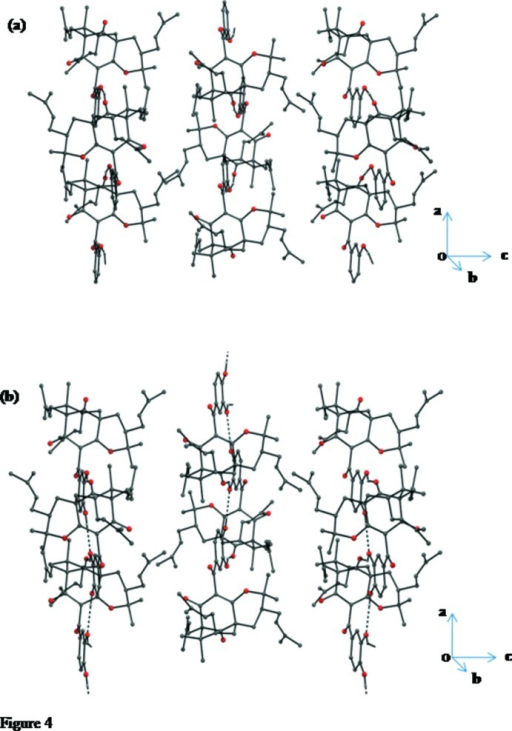 Packing of molecules viewed down the crystallographic b axis for (a) 1 and (b) isogarcinol.