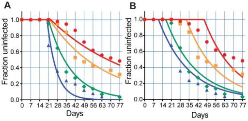 The impact of immunity on reinfection curves.The effects of liver stage immunity blocking a proportion of infected bites (A), or blood stage immunity decreasing the growth of parasites (decreased PMR) (B) is shown. Liver stage immunity alone decreases the rate of new infections, producing a family of exponential curves. Slower growth produces a family of curves shifted due to an increasing delay in detection. The same biting rate is used for all age groups. Blue triangle and blue line- C1, green diamond and green line - C2, orange square and orange line - C3, red circle and red line - A.