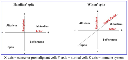 A comparison between the interaction spaces presented by the spite models proposed by Hamilton (left panel) and Wilson (right panel). Mutualism could be represented through the support of tumor growth by nonmalignant cells [30]. Moreover, some cancer cells become addicted to InterLeukin-3 to survive (primed cell for death) and so benefit from the immune system, and this is a kind of selfishness [31]. Yet, microenvironment acidity-induced cancer spite (MAICS) results in excessive cell death and eventually might prevent its spreadability and so it lies under the altruism umbrella because it results in an encapsulated tumor [32]. Cannibalism at the end results in death of both normal and malignant cells under the context of organismal selection so it is compatible with spite. Therefore, it would be very interesting if further studies carry on for determining how tumors handle the thresholds of the four quadrants.