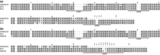 Sequence alignment of the VH of the four Bet v 1-specific IgE (a; B10 and B13, b; B14 and M0418) together with a translation of the IGHV5-51 germline gene, from which all clones originate. CDR1-3 are underlined.