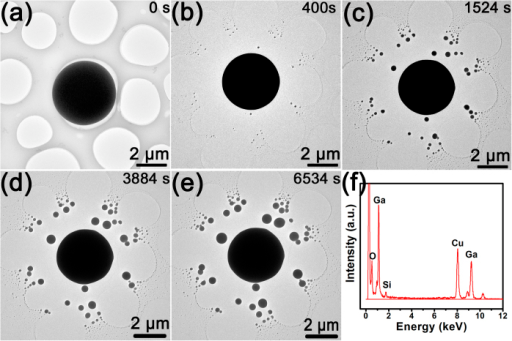 The morphologies and chemical information of the silica covered microscale Ga ball before and after irradiation.(a) TEM image of Ga ball before irradiation. (b–e) After irradiation of ~400 s, 1524 s, 3884 s and 6534 s, respectively. (f) The EDS spectra of the silica-shelled microscale Ga ball before irradiation.