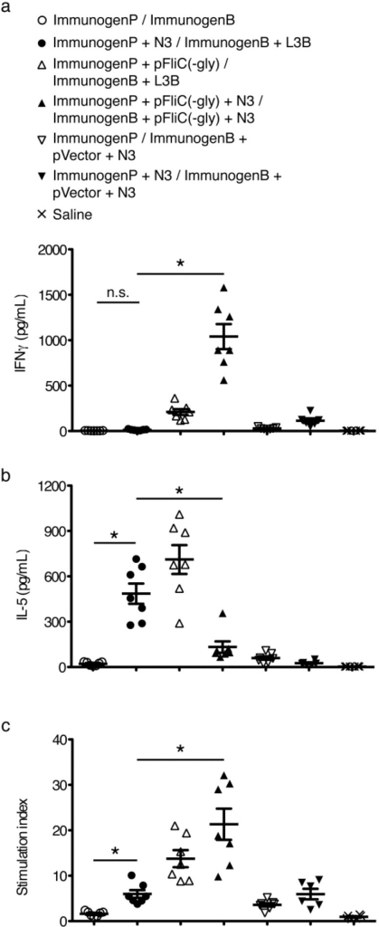 Analysis of T cell responses to immunizations with p24gag with and without adjuvant combinations. (a) Anti-mIFNγ ELISA was performed on cells restimulated with p24gag. Values shown were adjusted for baseline values seen using identical stimulations using splenocytes from naïve mice. Priming (ImmunogenP, plasmids) and boosting (ImmunogenB, rec proteins) groups are shown in the key. Immunization details are listed in Table 2; (b) Anti-mIL-5 ELISA was performed on cells restimulated with p24gag. Values shown were adjusted for baseline values seen using identical stimulations using splenocytes from naïve mice; (c) Proliferative response to stimulation with p24gag defined as stimulation index relative to identical stimulations using splenocytes from naïve mice. Statistical analyses were conducted using a two-tailed unpaired Student t test. * Differences of the responses between compared groups at week 4 after final boost defined as p ≤ 0.05 were considered significant. n.s. = non-significant. Comparisons between groups with the HIV-1 antigens were performed by using the non-parametric Mann-Whitney U test with Bonferroni correction, p < 0.05 was considered significant.