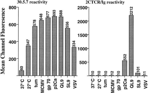 Soluble divalent 2C TCR–Ig retains the relative reactivity of  2C T cells towards specific peptide-stabilized H-2 Ld molecules. RMA-S  Ld cells were incubated under various conditions as described in Fig. 2.  Peptide stabilized H-2 Ld molecules were analyzed by flow cytometry as  described above. To facilitate comparison of peptide-stabilized H-2 Ld  molecules, data are presented as mean channel fluorescence.