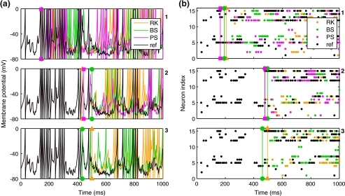 Izhikevich model recurrent network results: recordings from repeated simulations using the same network model and initial random inputs but varying the integration method and error tolerance/time step size. (a) Membrane potential traces from single neuron. (Top to bottom) Conditions 1–3. In each plot, the colour represents the integration method, with an additional reference trace drawn in black. The reference trace was drawn last. Thus, the appearance of coloured lines indicates divergence of test solutions from the reference. (b) Population raster plot of the first twenty cells in the same network model as in (a); layout and colours as in (a). The single cell traced in (a) appears here as neuron 5. As in (a), these plots are overlain by a reference solution in black. Thus, the appearance of coloured dots indicates divergence