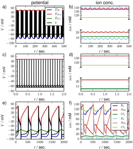 Time series.Time series for three types of oscillatory dynamics in the bath coupled reduced model. In the left panels (a), (c) and (e) the membrane potential and the three Nernst potentials are shown. Ion concentrations are shown in the right panels (b), (d) and (f). The color code is as in Fig. 5. (a) and (b), (c) and (d), and (e) and (f) are simulations for ,  and , respectively. The dynamics is typical for (a) and (b) seizure–like activity, (c) and (d) tonic firing, (e) and (f) periodic SD. Note the different time scales of SLA, tonic firing and period SD and also the different oscillation amplitudes in the ionic variables.