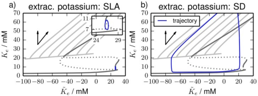 Phase space plots.Phase space plots of the simulations (a) for SLA and (b) periodic SDs from Fig. 7. Only extracellular potassium is shown. The limit cycle and fixed point curves from Figs. 2 and 4 are superimposed to the plots as shaded lines whereas the limit cycle and fixed point from Fig. 2 (dynamical chloride) are darker. The limit cycle and fixed point are not graphically distinguished, but comparison with Fig. 2 should avoid confusion.