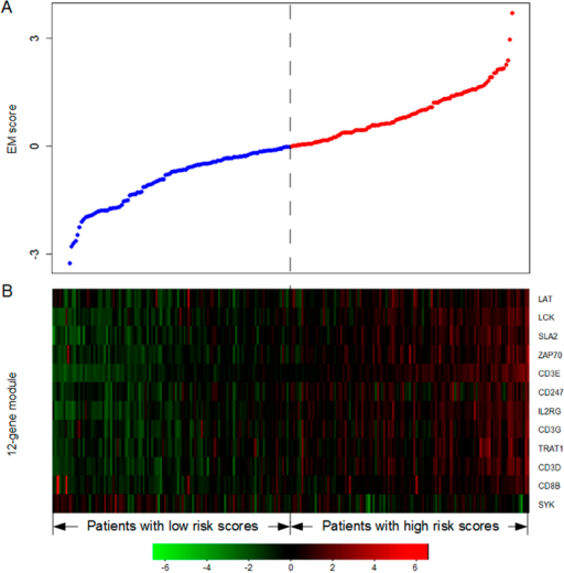 12-gene module risk score analysis of ovarian cancer.(A) The distribution of the 12-gene module risk score. Patients were divided into a high-risk group (Red) or a low-risk group (Blue) using the median risk score as the cutoff point. (B) Heatmap of the module genes' expression profiles. Rows and columns represented genes and patients, respectively.