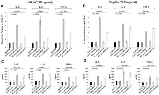 Expression of proinflammatory cytokines in HCLE-NT, HCLE-scrMUC1, HCLE-shMUC1, HCLE-scrMUC16, and HCLE-shMUC16 following exposure to TLR2 and TLR5 agonists[A, B] qRT-PCR analysis indicates that the message levels of the proinflammatory cytokines IL-6, IL-8, and TNF-α are increased in HCLE-shMUC1 and HCLE-shMUC16 cells in comparison to HCLE-NT, HCLE-scrMUC1, and HCLE-scrMUC16 cells following exposure of these cells to the TLR2 and TLR5 agonists, HKLM and flagellin, respectively. GAPDH was used as endogenous control in the qRT-PCRs. [C, D] Results from Luminex assays indicate that HCLE-shMUC1 and HCLE-shMUC16 cells secrete increased levels of IL-6, IL-8 and TNF-α following a 12 h exposure of the cells to HKLM and flagellin. Data shown are from experiments performed in biological triplicates. One way ANOVA was done to determine overall significance between groups. For internal comparisons, unpaired t-tests with Bonferroni correction were performed. *p<0.025 was considered significant.