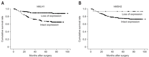 Kaplan-Meier survival curves according to hMLH1 and hMSH2 expressions. The loss of hMLH1 expression was significantly associated with a survival benefit (A), whereas the loss of hMSH2 expression was associated with a tendency toward a better prognosis that did not reach statistical significance (B).