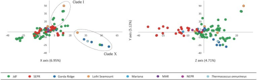 Principal component analysis of AFLP data with the first three principal components describing the greatest variation plotted on the X, Y, and Z axes. Principal component 1 and 2 plotted on the X and Y axes differentiate isolates in Clade I and Clade X from other isolates in this study. Principal component 3 plotted on the Z axis differentiates isolates into larger regionally related groups.