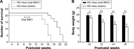 Oral B401 treatment prolongs life and maintains body weight of R6/2 (HD) mice.Notes: (A) Survival duration of R6/2 mice given the oral B401 treatment was longer than those given the sham treatment. (B) Averaged body weight of R6/2 mice given the oral B401 treatment was significantly higher when compared with those given the sham treatment from 10 weeks of age and thereafter. The number of R6/2 mice under oral B401 and sham treatments were 22 and 20, respectively. Values are mean ± SEM (*P<0.05, **P<0.01, one-way ANOVA followed by a Student–Newman–Keuls multiple comparison posttest).Abbreviations: HD, Huntington's disease; ANOVA, analysis of variance; SEM, standard error of the mean.