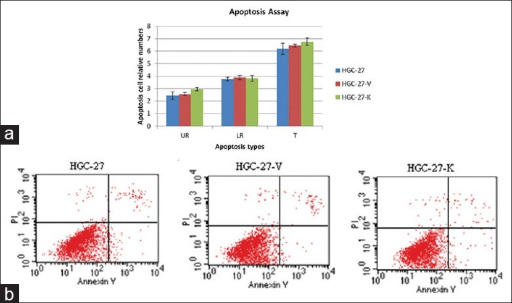 GPR34 knockdown does not induce the apoptosis of HGC-27 cell in vitro. Cell apoptosis was assessed by Annextin V assay. (a) The apoptotic cells in UR, LR, and total (T) were counted and expressed as the percentage of total cells. There is significant difference between HGC-27, HGC-27-V, and HGC-27-K (P > 0.05 vs. controls, n = 3); (b) GPR34 knockdown did not induce the apoptosis in HGC-27 cells.
