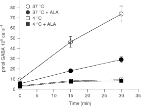 Dependence of GABA uptake on temperature. GABA uptake was measured at 37°C or 4°C in the absence or the presence of ALA. When uptake was determined in the presence of ALA, cells were preincubated 15 min with 10 mM ALA. Then 14C-GABA was added and radioactivity was measured.